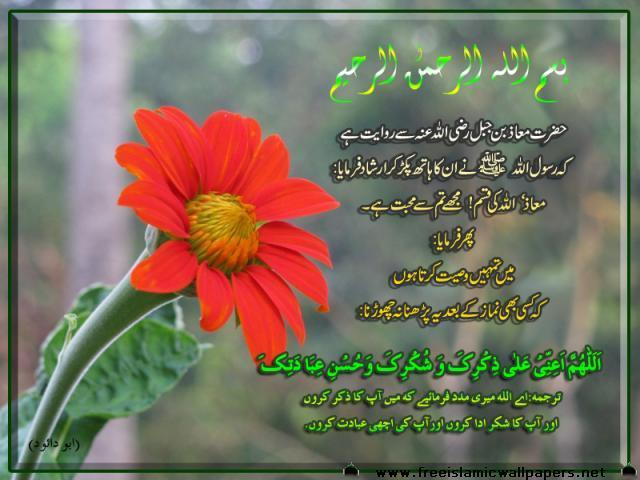 advice to Hazra MOaz(R.A)